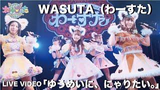 WASUTA(わーすた)「Yumeini Nyaritai.」(ゆうめいに、にゃりたい。)Live Video