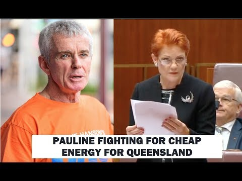 PAULINE FIGHTING FOR CHEAP ENERGY FOR QUEENSLAND.