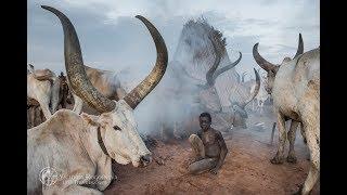 Реальное видео из Южного Судана. Мундари.