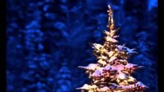 Åsa Jinder - Jul jul strålande jul