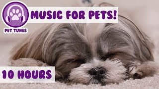 Music For dogs, Calm and Relax Your Dog at Home, Quickly Soothe Your Dog, Help Your Dog Sleep