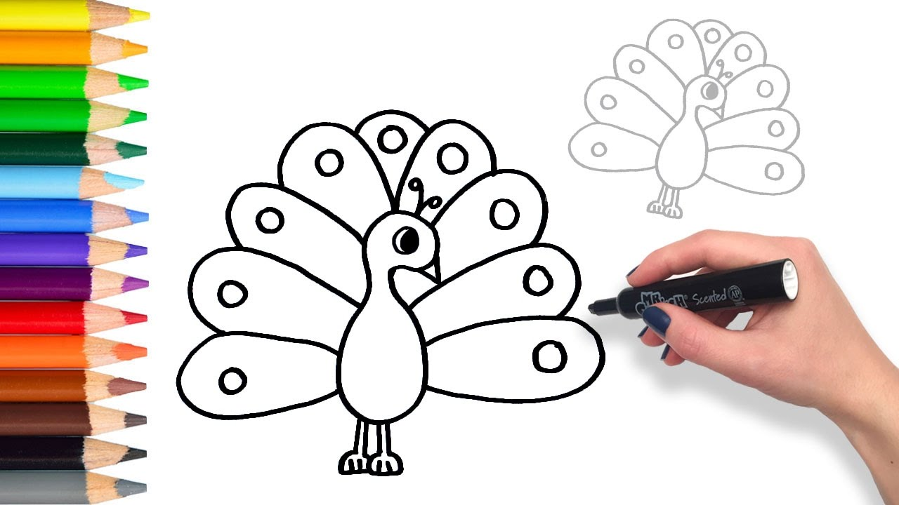 how to draw a colourful peacock teach drawing for kids and toddlers coloring page video - Images For Kids Drawing