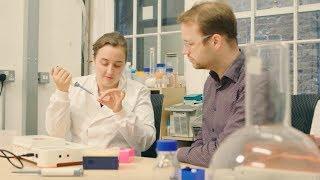Bento Lab: Making DNA Analysis More Accessible