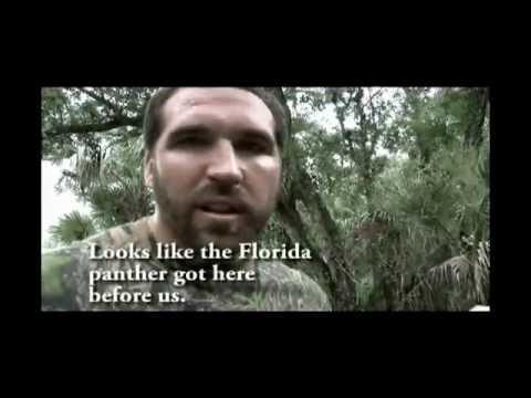 Jared Allen Florida Swamp Relentless Pursuit