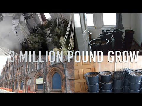 £3-million-pound-cannabis-factory-(victorian-school)-scarcity-tour-#streetnews
