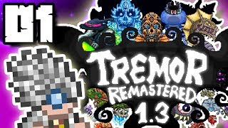 Download Terraria 1 3 Mod Videos - Dcyoutube
