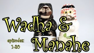 1-20 Wadha and Manahe (instagram)- #English #vocabulary with examples