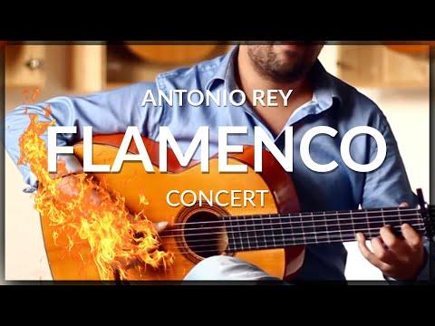 Antonio Rey - Flamenco Concert by the 2020 Latin Grammy Award guitarist