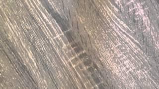 Owen Retro Coffee Table, Sonoma Oak
