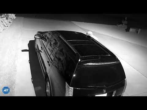 Car Thief Caught In Vadnais Heights, Minnesota