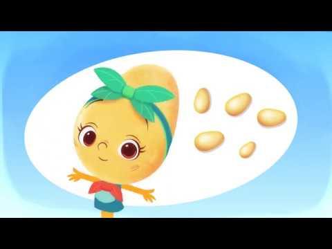 Vidéo Je suis LA Pomme de terre Délicatesse!