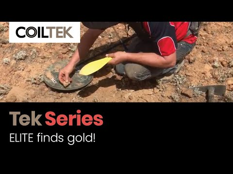 Finding Gold With The Coiltek ELITEs In South Australia
