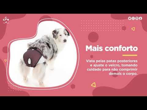 Protetor para Fralda & Cio – Cães Fêmeas - Pet Med
