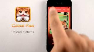 Cutest Paw iOS App Demo