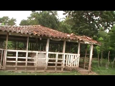 Video de Ranchuelo