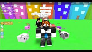 Angry PEOPLE ON ROBLOX - Roblox pet simulator