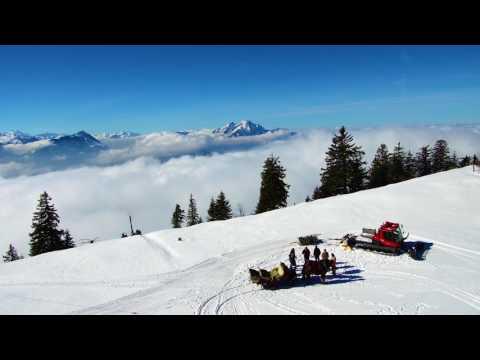 Mount Rigi Walk Switzerland