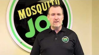 Mosquito Joe of Western Wake - Mosquito Control Services in North Carolina