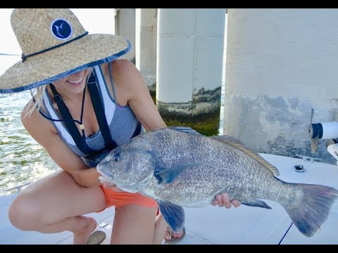 Black Drum Fishing Near Bridge Pilings With TIPS And HOW TO