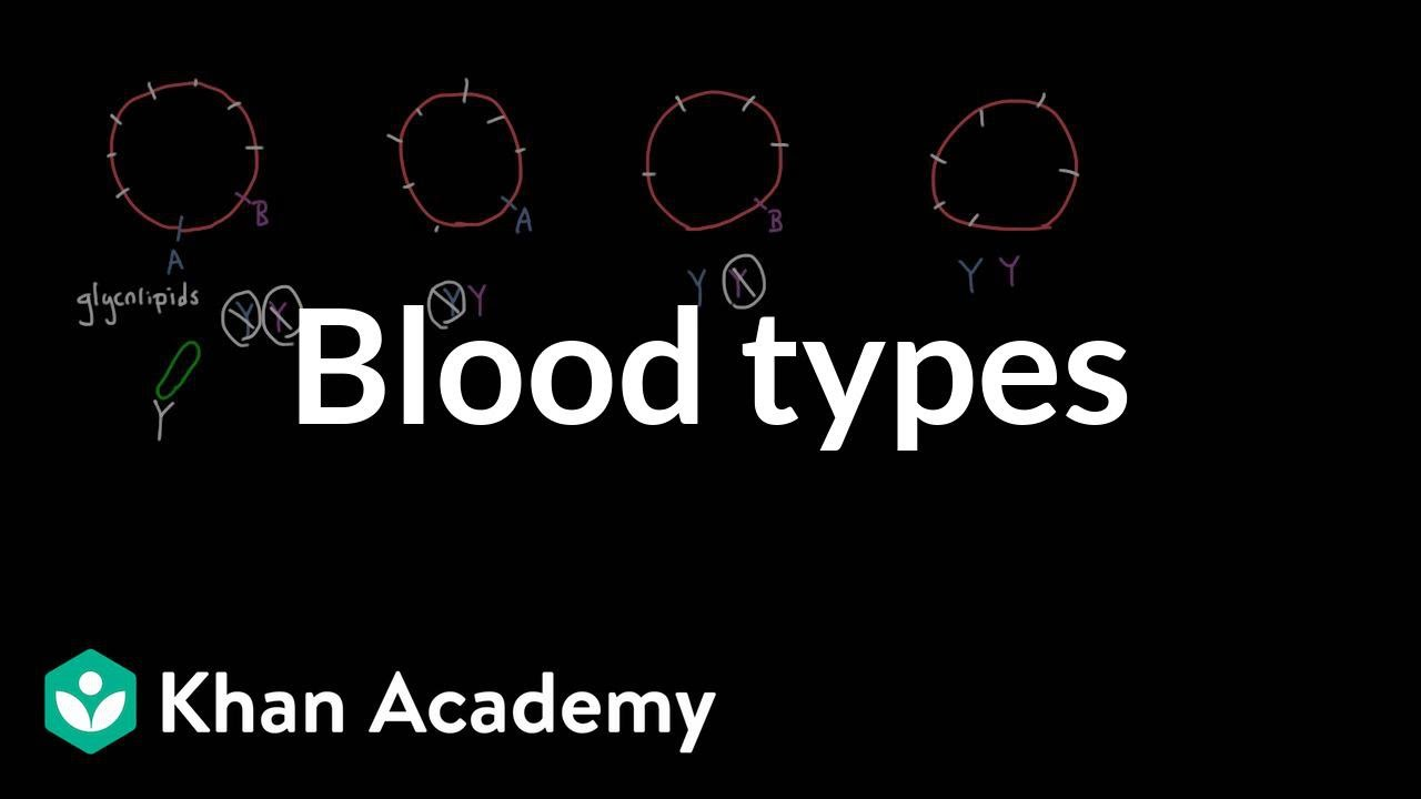 Blood types | Human anatomy and physiology | Health & Medicine ...
