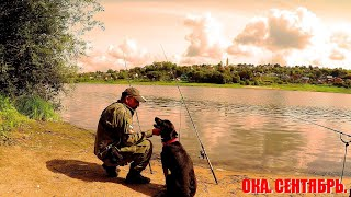 Рыбалка С Ночёвкой на Оке. Хороший Улов при Плохом Клёве. Рыбалка на Старом, Давно Забытом Месте.