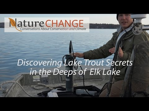 Discovering Lake Trout Secrets in the Deeps of Elk Lake