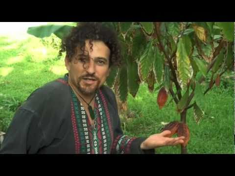 David Cacao Wolfe on Sacred Chocolate: The Best Raw Organic Chocolate on Earth!