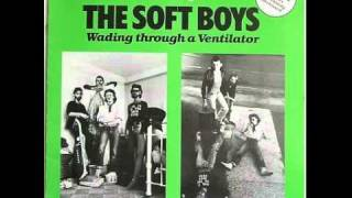 Watch Soft Boys Wading Through A Ventilator video