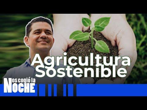 Qué Es Agricultura Sostenible - Nos Cogió La Noche