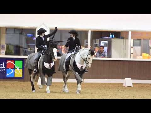 BRC SEIB Insurance Brokers Quadrille Selection Trial 2017