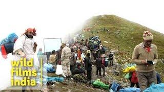 Proccession of Nanda Devi Raj Jat Yatra, Uttarakhand