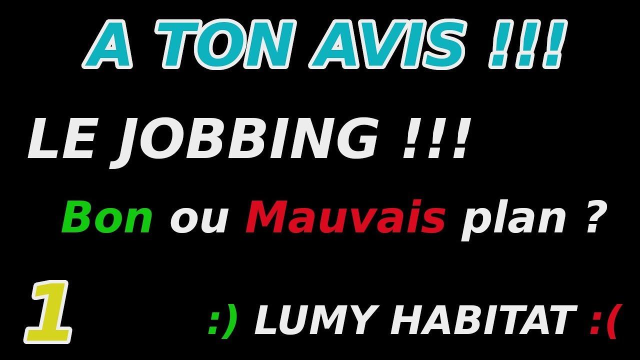 Download Le JOBBING pour des TRAVAUX : un Bon ou Mauvais plan ? ATA 1