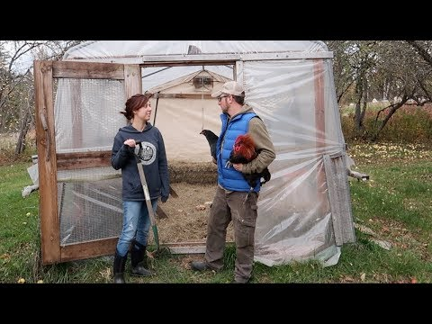 Time To get the Winter CHICKEN COOP Ready FOR our RARE BREED CHICKENS