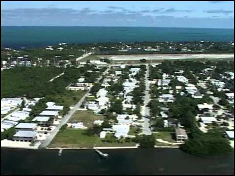 Waterways Episode 238 - Smalltooth Sawfish AND Marine Life Collectors