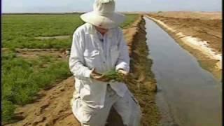 Eritrea - Greening Eritrea (Part 2)