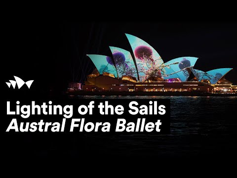 Lighting Of The Sails 2019 |