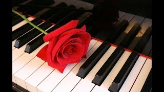 🔴 Beautiful Piano Music: Relaxing Music, Study Music, Sleep Music, Meditation Music