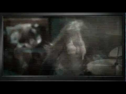 Nine Inch Nails  Last   made Music Video featuring