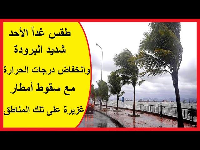 طقس غداً الأحد.. شديد البرودة وانخفاض درجات الحرارة مع سقوط أمطار غزيرة على تلك المناطق