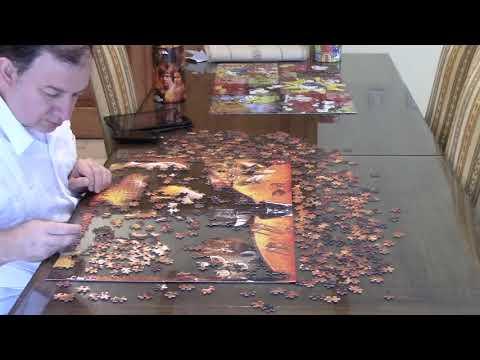 Cómo armar un rompecabezas de 1000 piezas en tres minutos (time lapse)