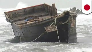 North Korea escape failure? Ghost ship with remains of 8 people found on Japanese coast - TomoNews