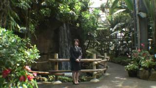 http://oceanveil.com/nanpara/ オーシャンヴェールリゾートの中にある...