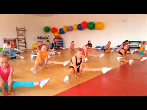 Aerobic professional motivation 2015