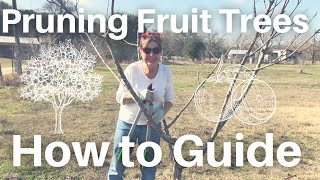 How to Prune Fruit Trees For Beginners! 🌳 🍎 🍐 🍑