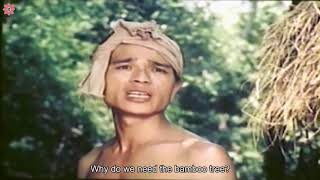 Young Fellow Bom   Best Vietnam Movies You Must Watch   Vsense
