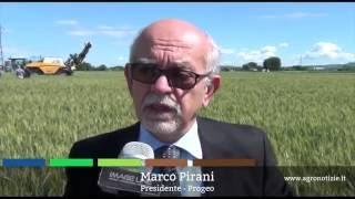 Progeo, esperienza in campo - presidente Marco Pirani - maggio 2016