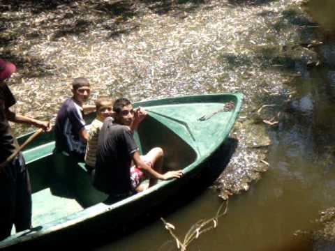 tournée en barque sur le marais de Tonga (el-kala)