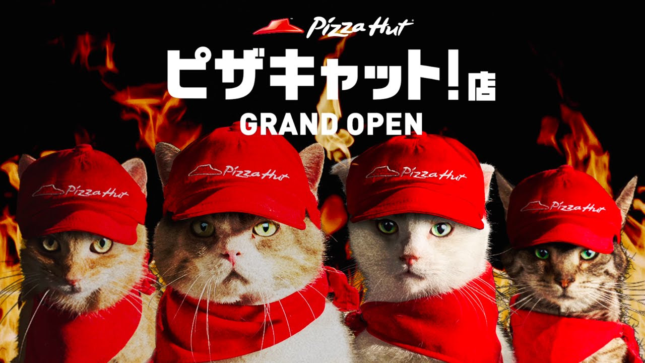 Pizza Hut Advertises with Store Staffed by Cats | Tokyo Cheapo