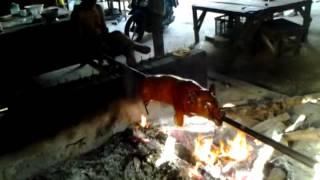 babi guling Bali