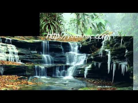 Tinh doi - Cam Ly, Quoc Dai